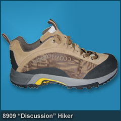 8909 Discussion Hiker